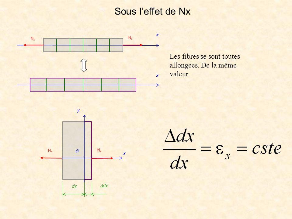 Sous l'effet de Nx Nx x Les fibres se sont toutes allongées. De la même valeur. x dx Ddx G y Nx