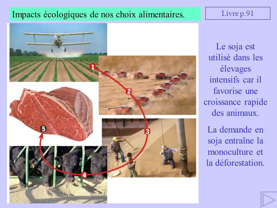 La demande en soja entraîne la monoculture et la déforestation.
