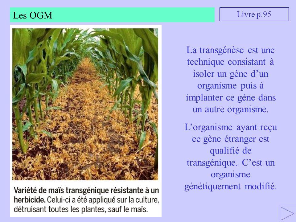 Les OGM Livre p.95. La transgénèse est une technique consistant à isoler un gène d'un organisme puis à implanter ce gène dans un autre organisme.