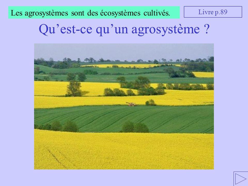 Qu'est-ce qu'un agrosystème
