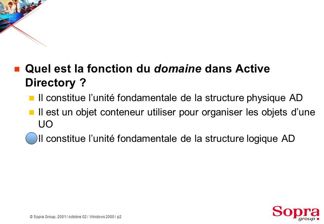 Quel est la fonction du domaine dans Active Directory