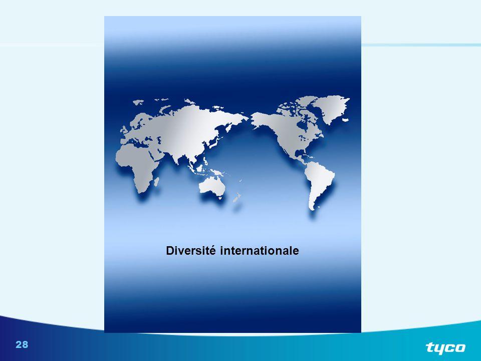 Suppositions relatives aux problèmes liés à la diversité internationale