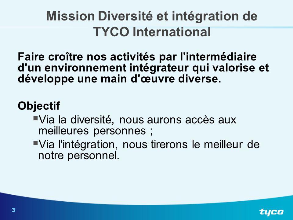 Mission Diversité et intégration de TYCO International (suite)