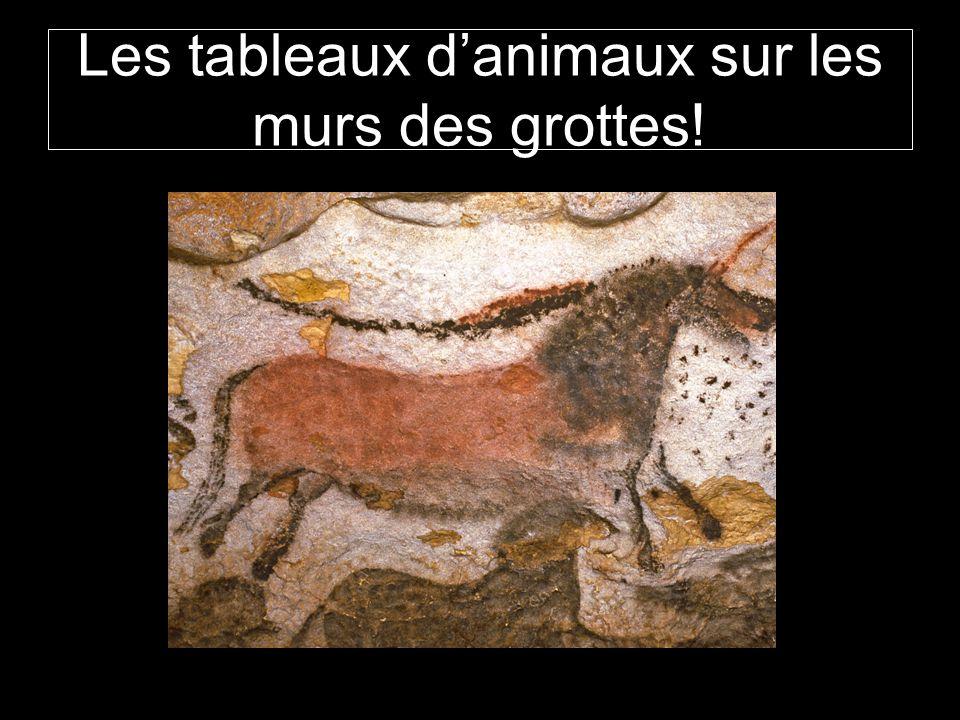 Les tableaux d'animaux sur les murs des grottes!