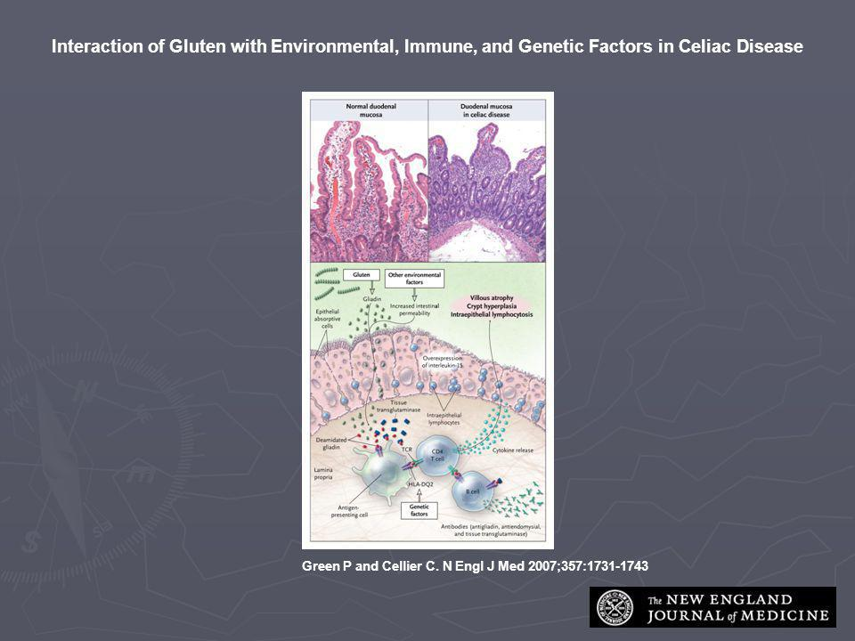 Interaction of Gluten with Environmental, Immune, and Genetic Factors in Celiac Disease