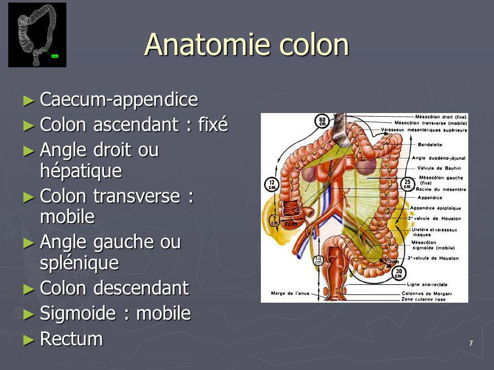 Anatomie colon Caecum-appendice Colon ascendant : fixé