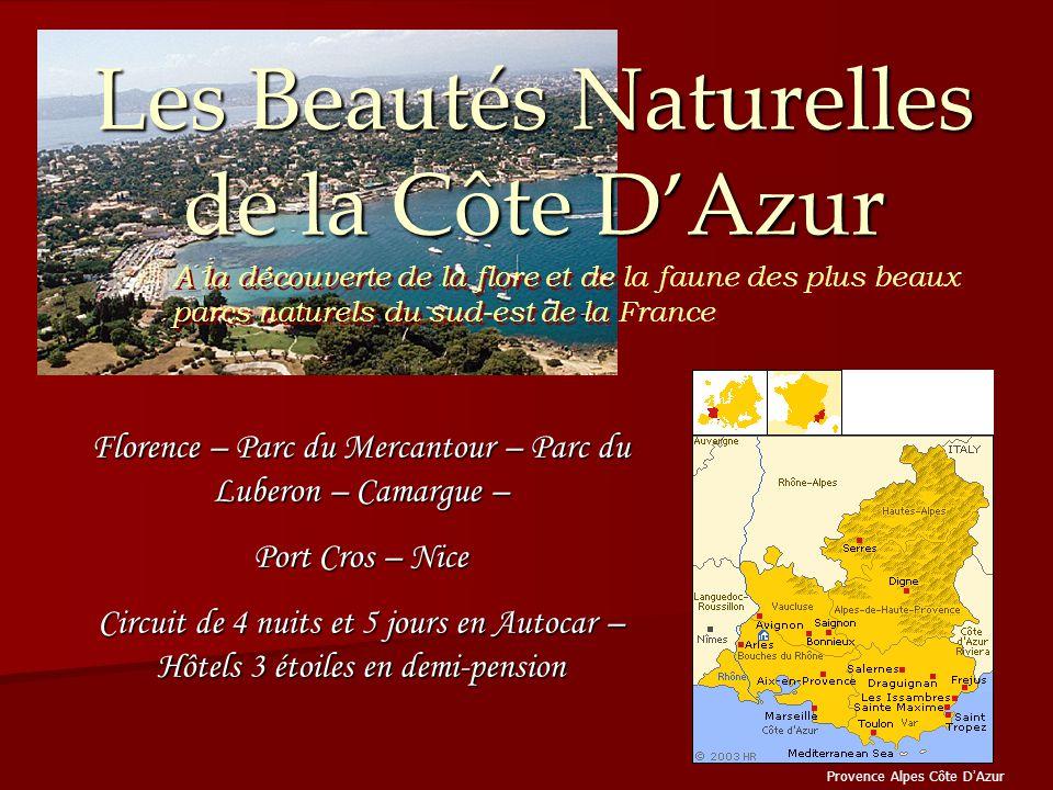 Les Beautés Naturelles de la Côte D'Azur