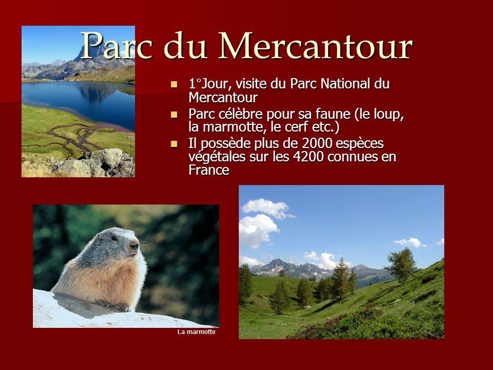 Parc du Mercantour 1°Jour, visite du Parc National du Mercantour