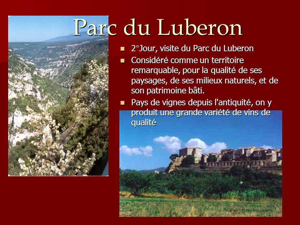 Parc du Luberon 2°Jour, visite du Parc du Luberon
