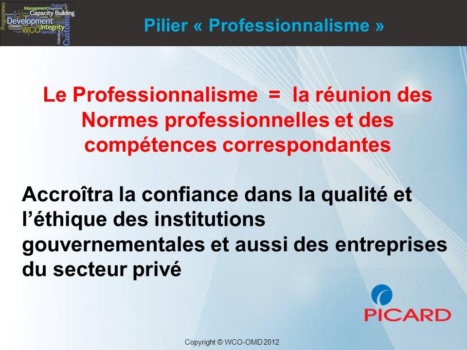 Pilier « Professionnalisme »