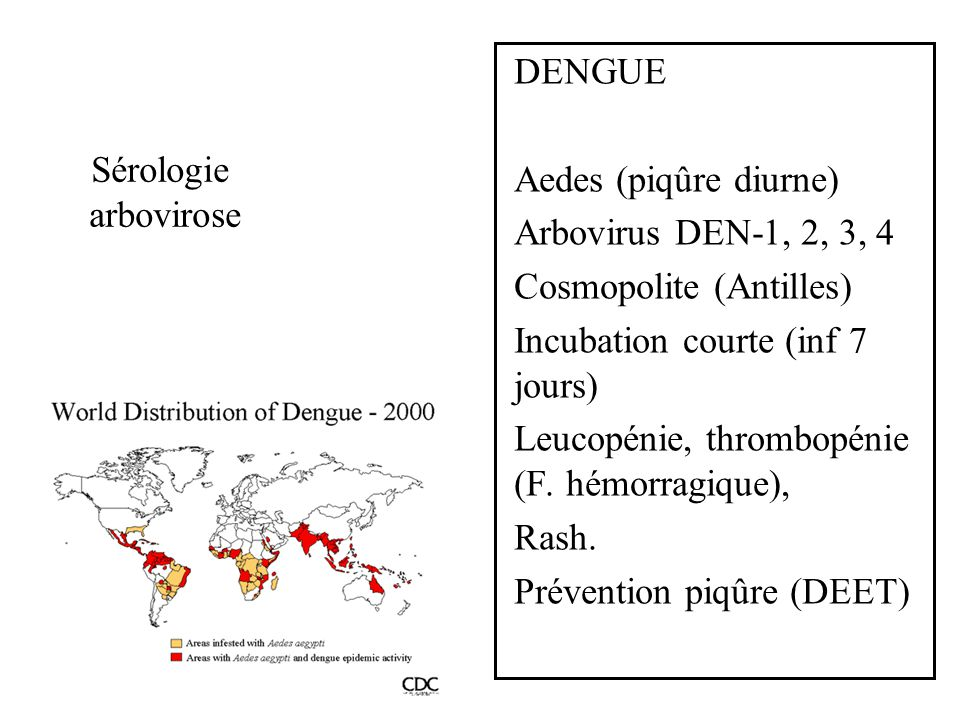 DENGUE Aedes (piqûre diurne) Arbovirus DEN-1, 2, 3, 4. Cosmopolite (Antilles) Incubation courte (inf 7 jours)