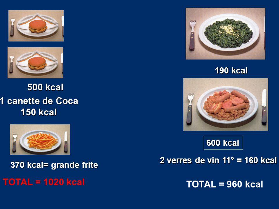 500 kcal 1 canette de Coca 150 kcal TOTAL = 1020 kcal TOTAL = 960 kcal