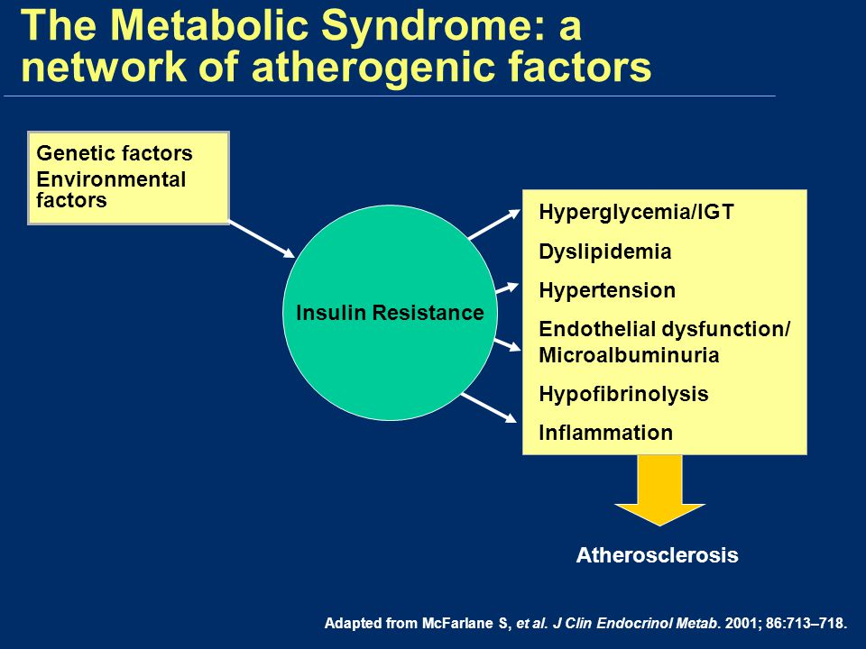 The Metabolic Syndrome: a network of atherogenic factors