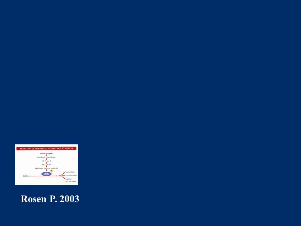 Rosen P. 2003