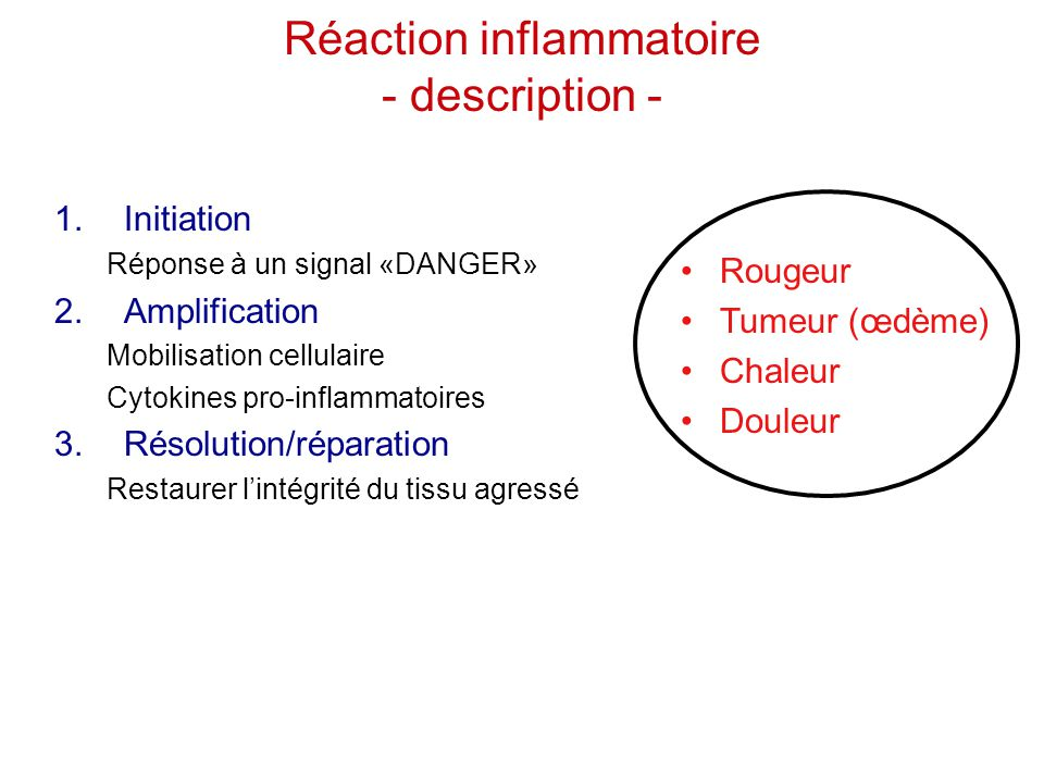 Réaction inflammatoire - description -