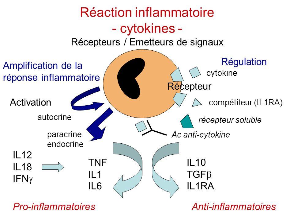 Réaction inflammatoire - cytokines - Récepteurs / Emetteurs de signaux