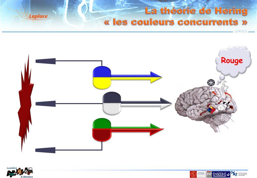 La théorie de Hering « les couleurs concurrents »