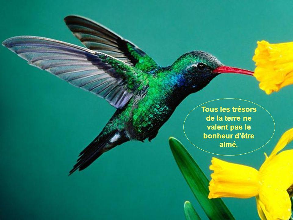 Tous les trésors de la terre ne valent pas le bonheur d être aimé.