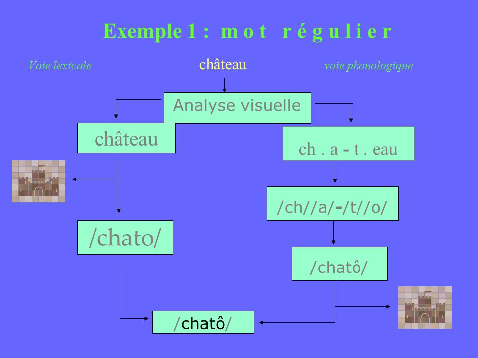 /chato/ Exemple 1 : m o t r é g u l i e r château ch . a - t . eau