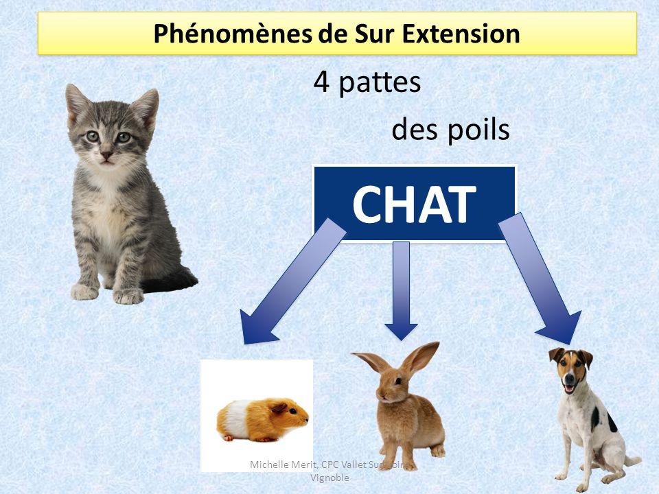 Phénomènes de Sur Extension