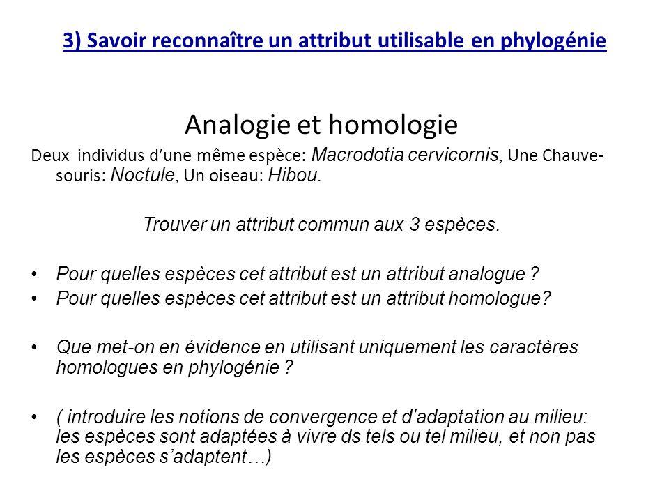 3) Savoir reconnaître un attribut utilisable en phylogénie