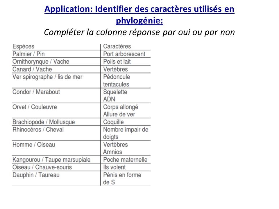 Application: Identifier des caractères utilisés en phylogénie: Compléter la colonne réponse par oui ou par non