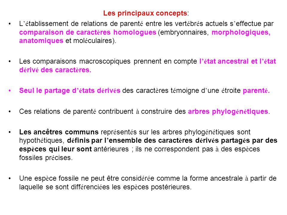 Les principaux concepts: