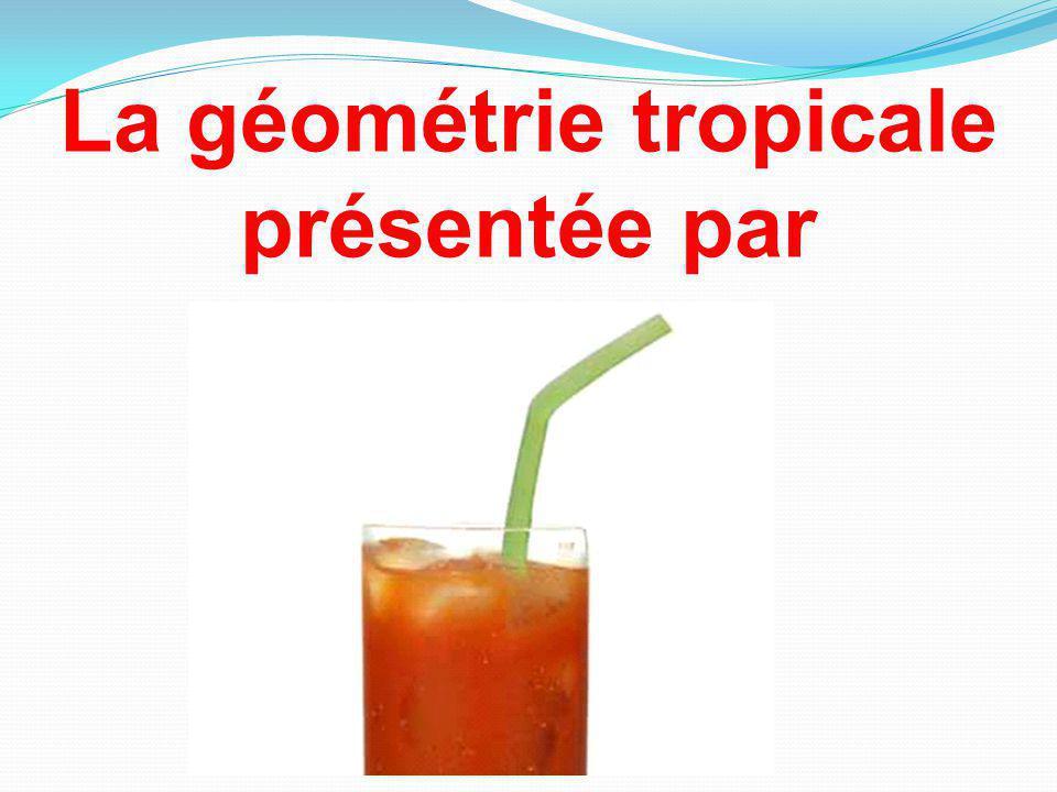 La géométrie tropicale