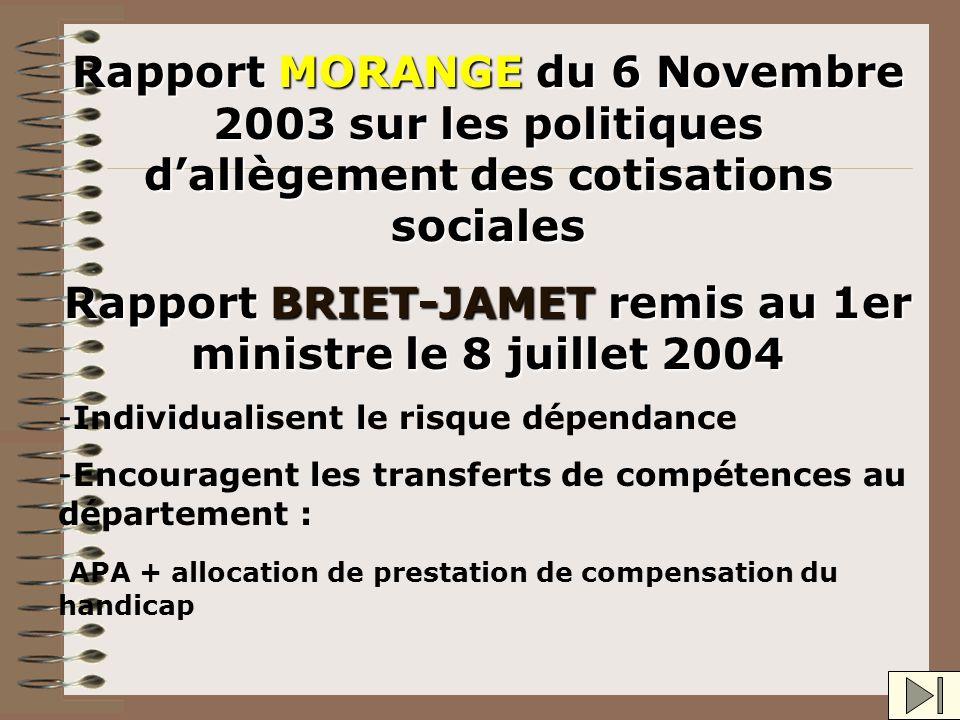 Rapport BRIET-JAMET remis au 1er ministre le 8 juillet 2004