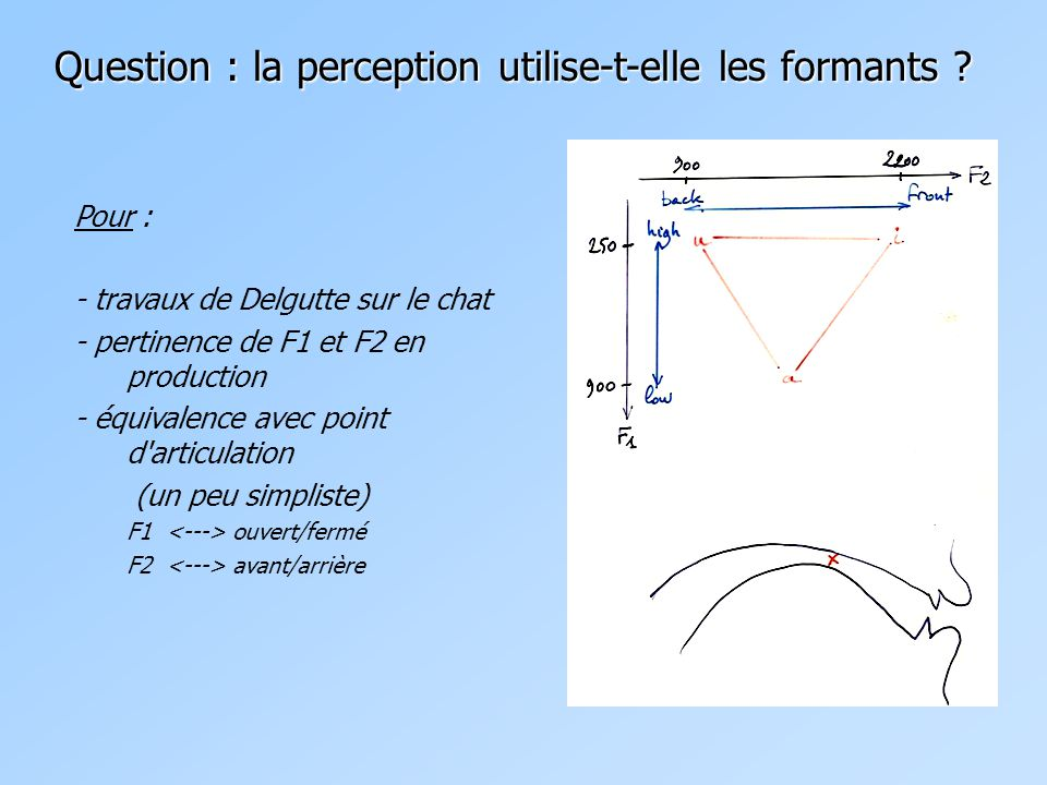 Question : la perception utilise-t-elle les formants