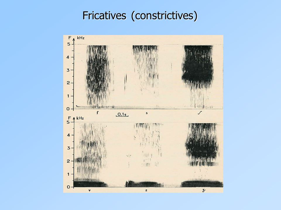 Fricatives (constrictives)