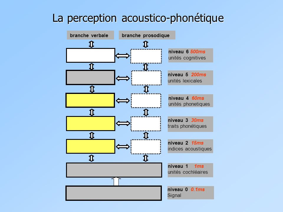 La perception acoustico-phonétique