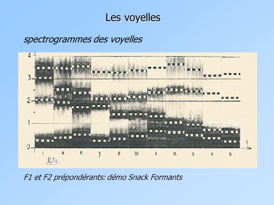 Les voyelles spectrogrammes des voyelles