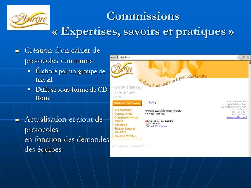 Commissions « Expertises, savoirs et pratiques »