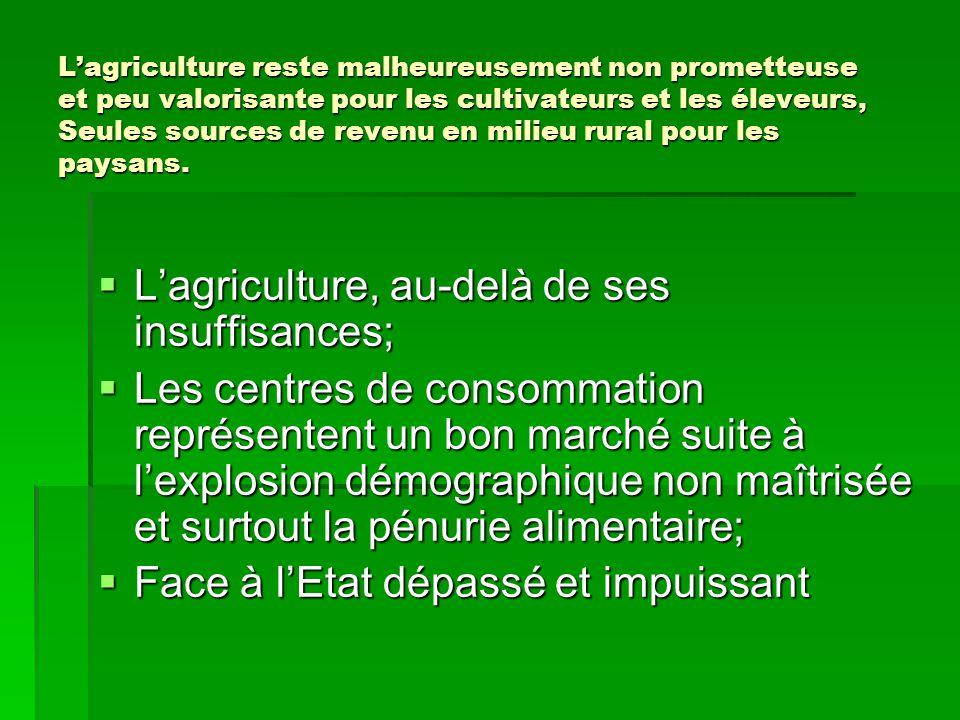 L'agriculture, au-delà de ses insuffisances;