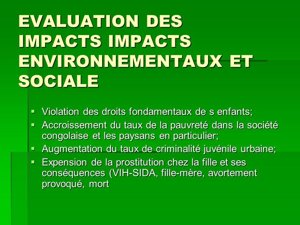 EVALUATION DES IMPACTS IMPACTS ENVIRONNEMENTAUX ET SOCIALE