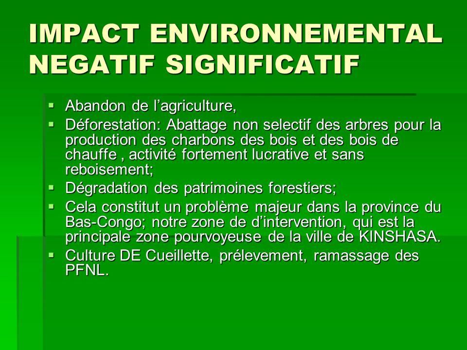 IMPACT ENVIRONNEMENTAL NEGATIF SIGNIFICATIF