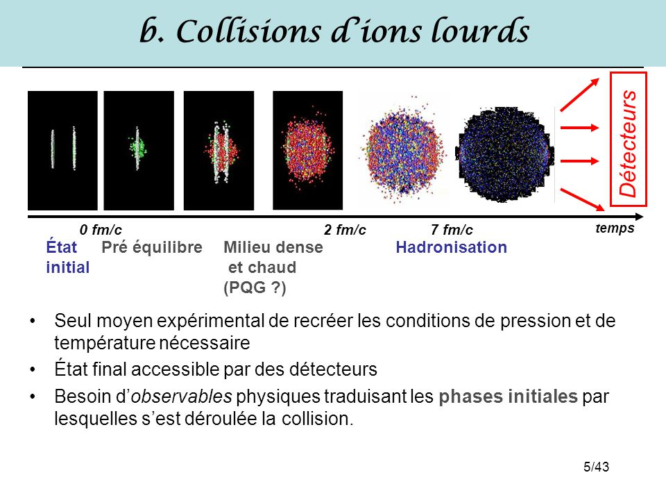 b. Collisions d'ions lourds