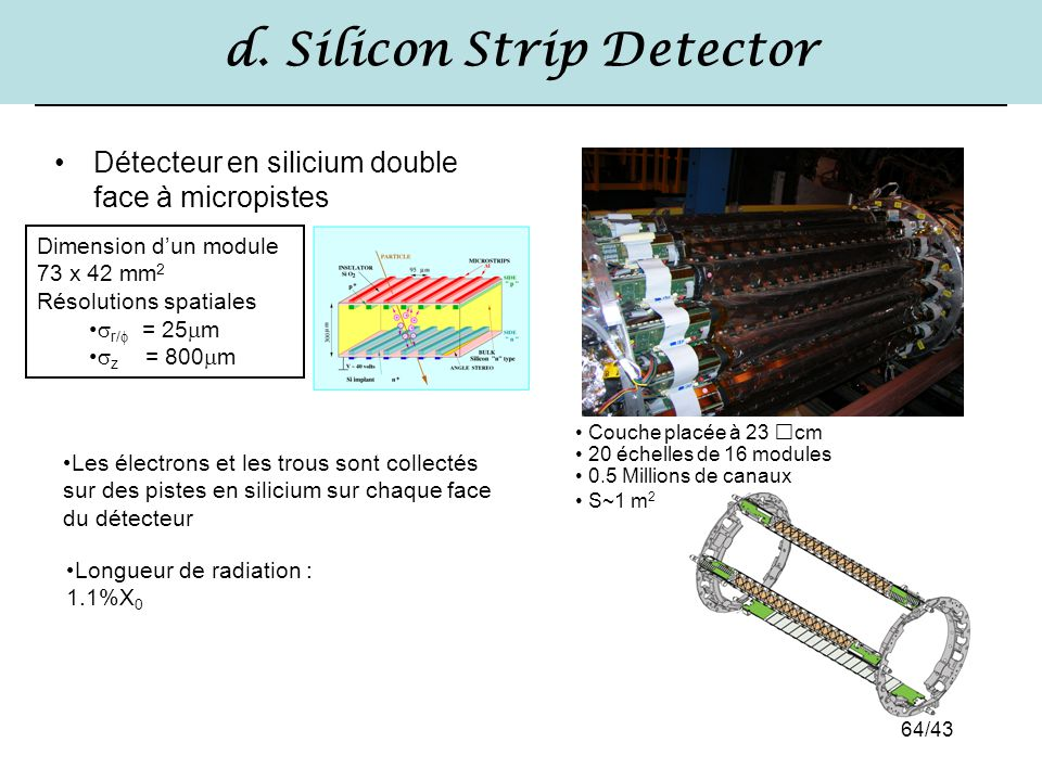 d. Silicon Strip Detector