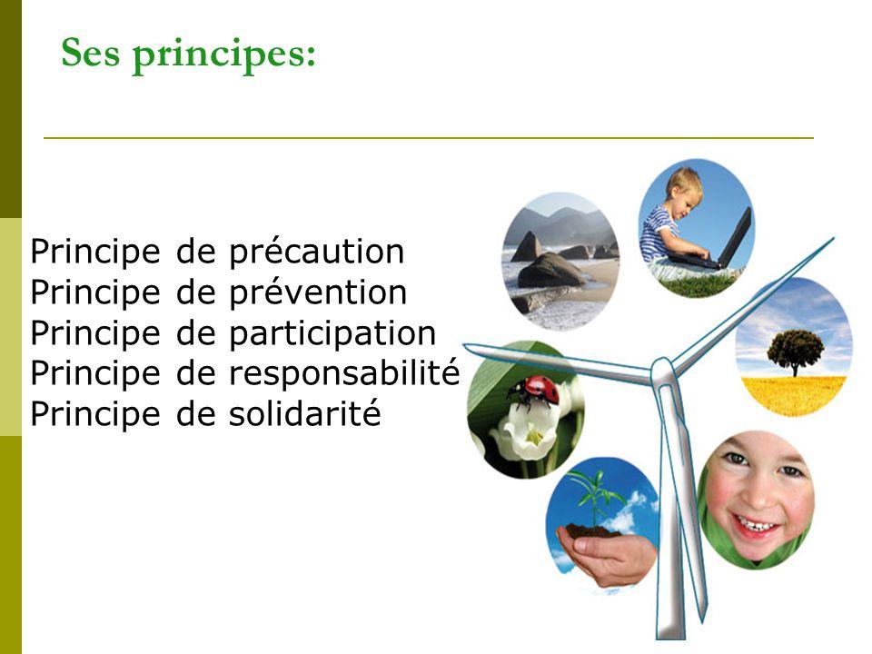 Ses principes: Principe de précaution Principe de prévention