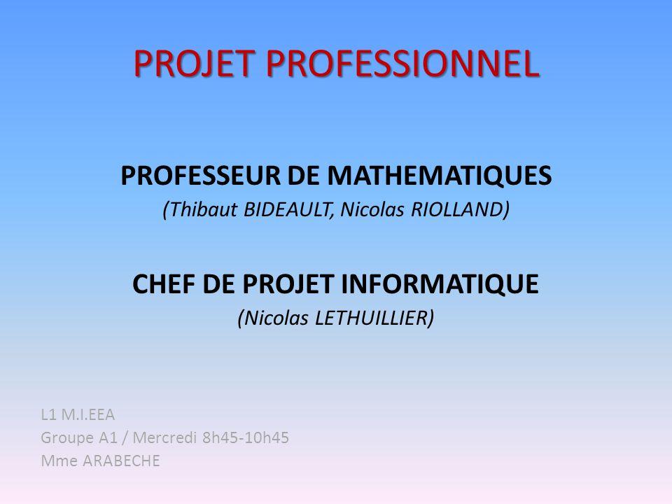 PROFESSEUR DE MATHEMATIQUES CHEF DE PROJET INFORMATIQUE