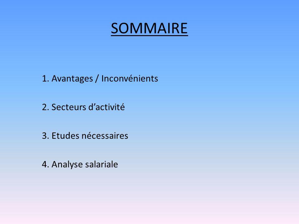 SOMMAIRE 1. Avantages / Inconvénients 2. Secteurs d'activité