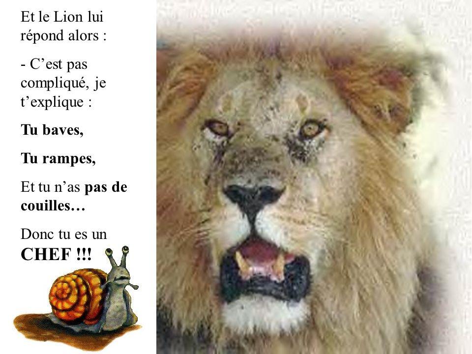 Et le Lion lui répond alors :