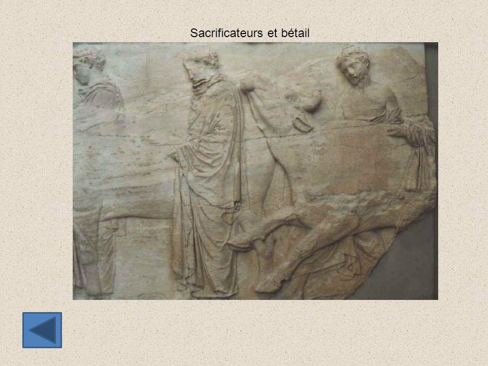 Sacrificateurs et bétail