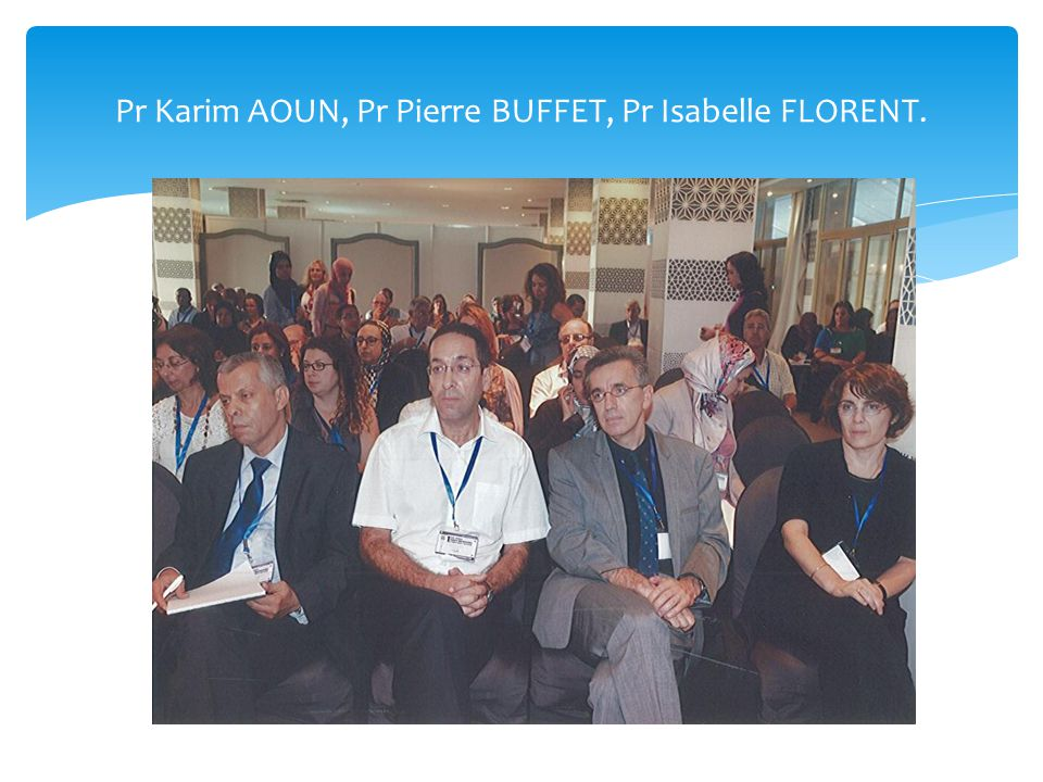 Pr Karim AOUN, Pr Pierre BUFFET, Pr Isabelle FLORENT.