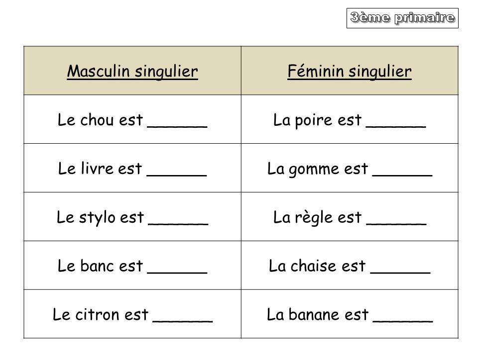 3ème primaire Masculin singulier Féminin singulier Le chou est ______