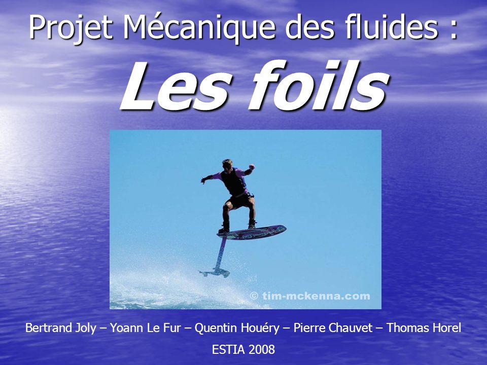 Projet Mécanique des fluides : Les foils