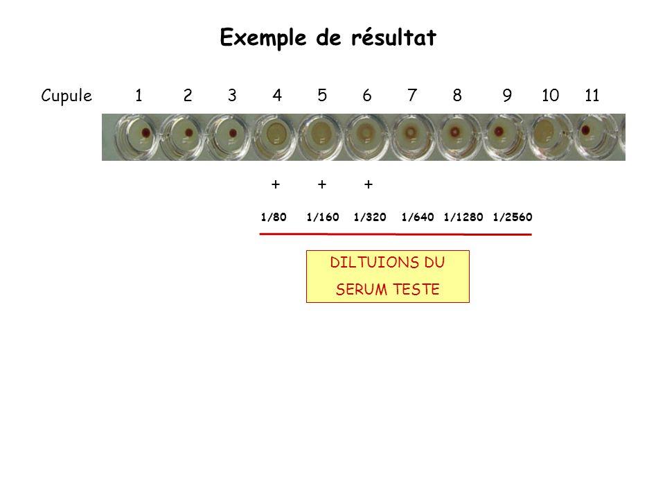 Exemple de résultat Cupule 1 2 3 4 5 6 7 8 9 10 11 + + + DILTUIONS DU