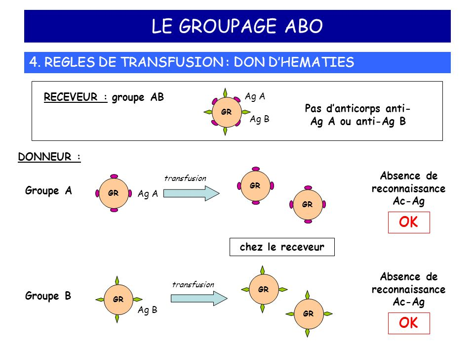 LE GROUPAGE ABO 4. REGLES DE TRANSFUSION : DON D'HEMATIES OK OK