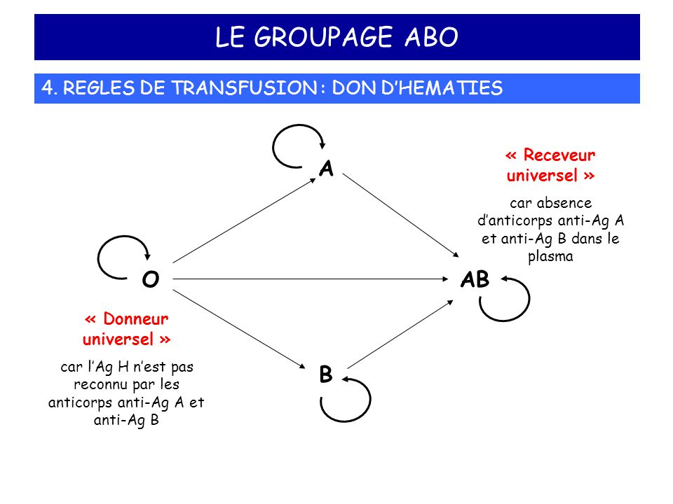 LE GROUPAGE ABO A B AB O 4. REGLES DE TRANSFUSION : DON D'HEMATIES